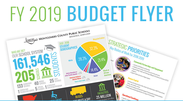 FY 2019 Budget Flyer