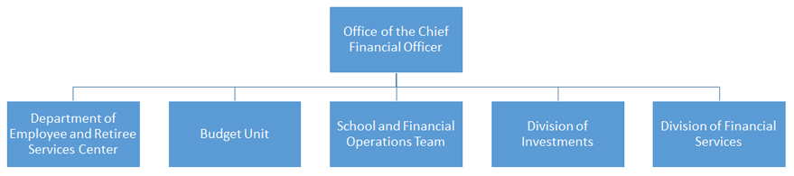 Cheif Financial Officer Organization Chart
