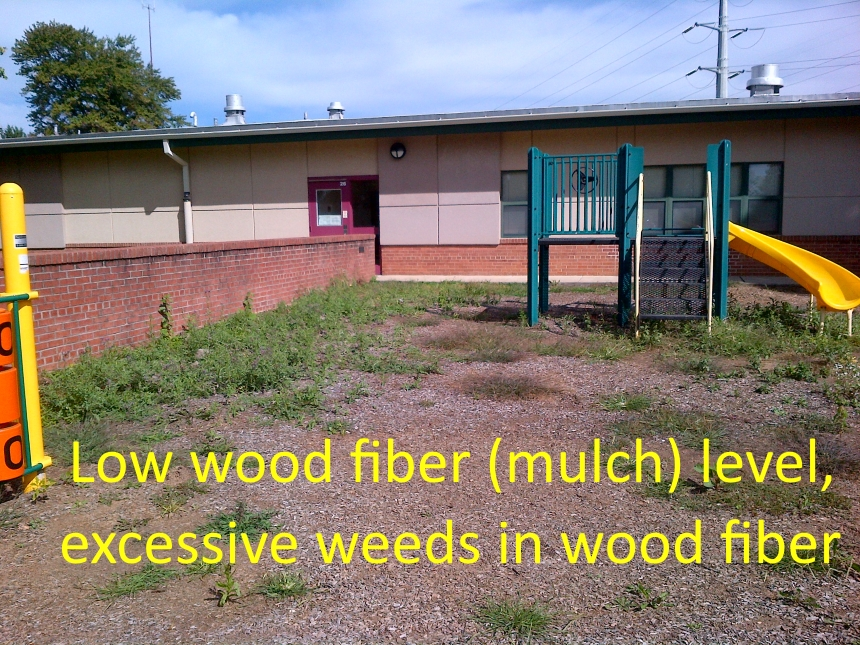 Not enough wood fiber, too many weeds