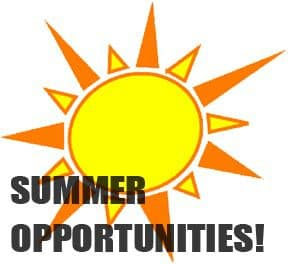 summer-opportunities